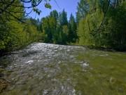 Up Thornton Creek